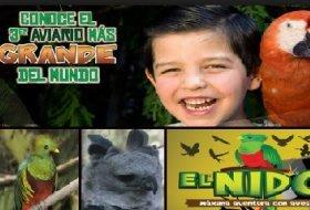 Visita en familia: El Nido. El Nido. Actividades para niños. Planes para niños. Zona Metropolitana Ixtapaluca